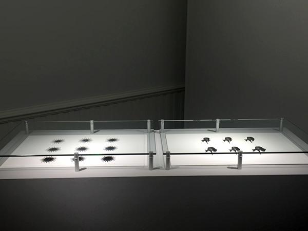 FilamentSculptures_NAU_ArtMuseum